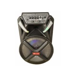Аккумуляторная колонка ZXX 8884 с микрофоном 300W 12 дюймов USB/FM/Bluetooth