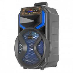 Акустическая аккумуляторная колонка 12 дюймов (USB/FM/BT/LED) KOLAV-120E