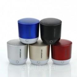 Портативная колонка Bluetooth Hopestar H9