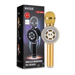 Микрофон караоке Wster WS-669